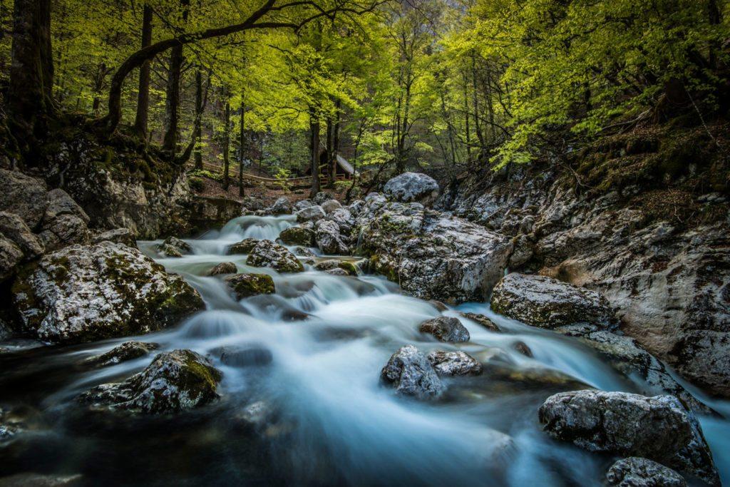 Bled, Slowenien, See, Natur, Landschaft,  Landschaft, Landscape, Landschaftsfotografie, Lorenz Masser